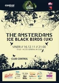 Ice Black Birds