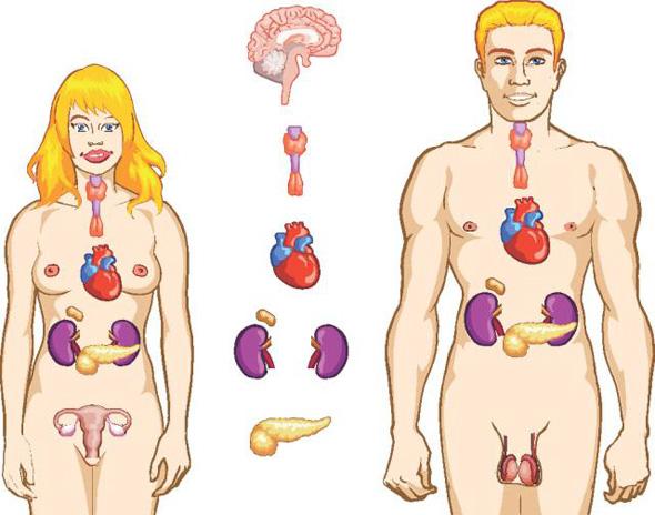 analize care iti salveaza viata analize pentru tiroida