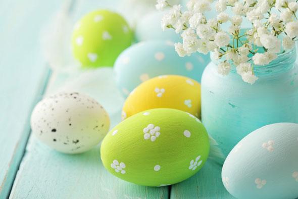curiozitati despre oua si semnificatia codului stampilat pe oua