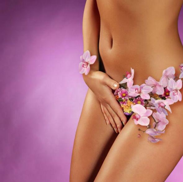 plante medicinale pentru sanatatea intima