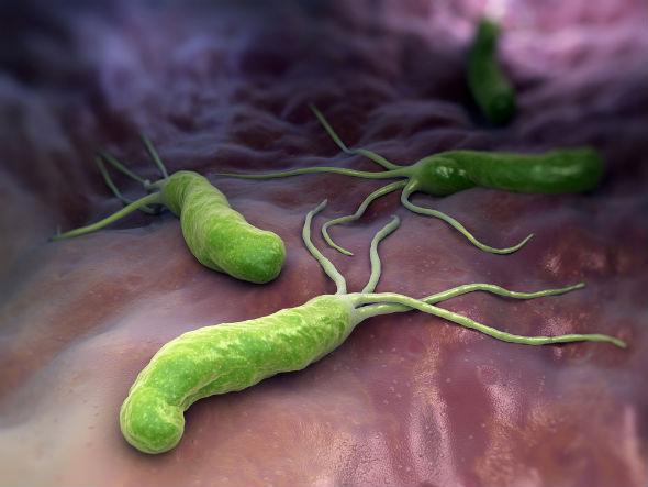 helicobacter pilory simptome