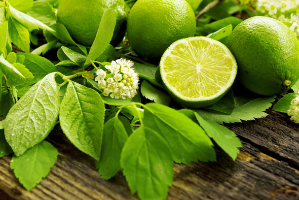 lime beneficii