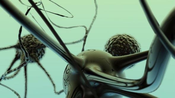 curiozitati despre creier - neuronii se renegenreaza