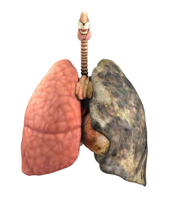 ce se intampla in corpul tau dupa ce fumezi