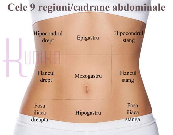 regiuni cadrane abdominale