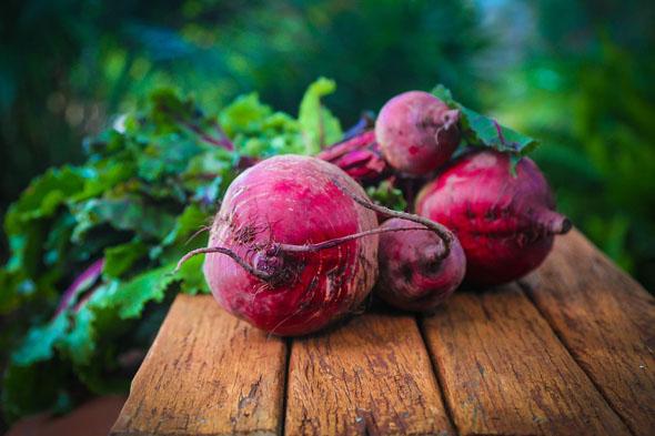 sfecla rosie beneficii