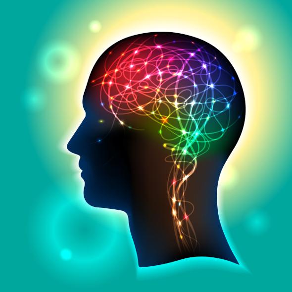 capacitatea creierului