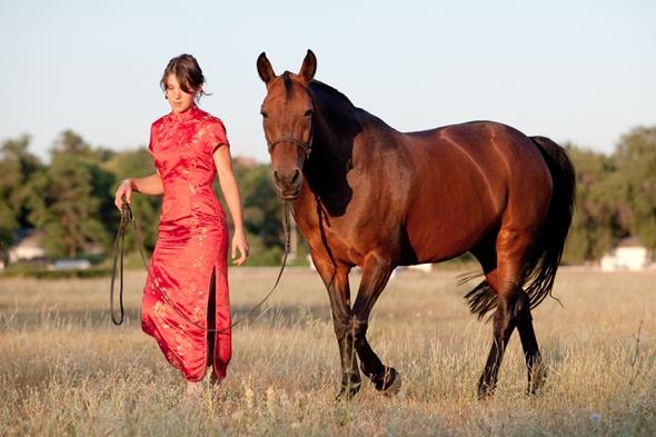 horoscop chinezesc 2014 cal de lemn