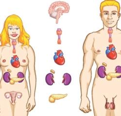 Ce trebuie sa stii despre afectarea glandelor paratiroide