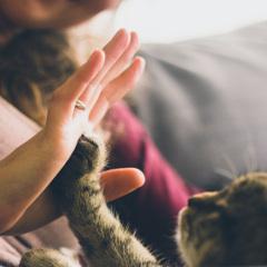 3 motive pentru a-ti manifesta bunatatea sufleteasca