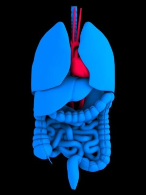 Cancer colon Cancerul de colon nu este zgomotos ca simptomatologie,