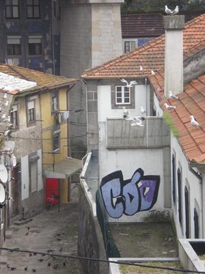 Weekend de vis in nordul Portugaliei - Dupa un periplu atat de indelungat, ne simtim prea lenesi pentru - Slide 5 din 12