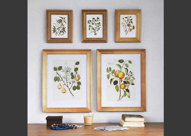 Rame FANAHOLM - 20 de rame foto si tablouri decorative - Slide 1 din ...