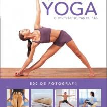 Notiuni fundamentale de Yoga. Curs practic pas cu pas