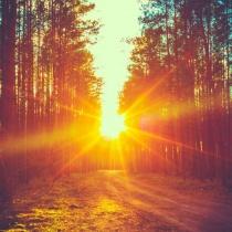 Cele 10 Porunci care sa te ghideze in viata