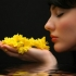 Meditatie si armonie prin Feng Shui