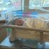 Caz incredibil: Aceasta femeie a nascut la o ora dupa ce a aflat ca este insarcinata