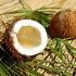Uleiul de cocos, vedeta in bucatarie si in saloanele de frumusete