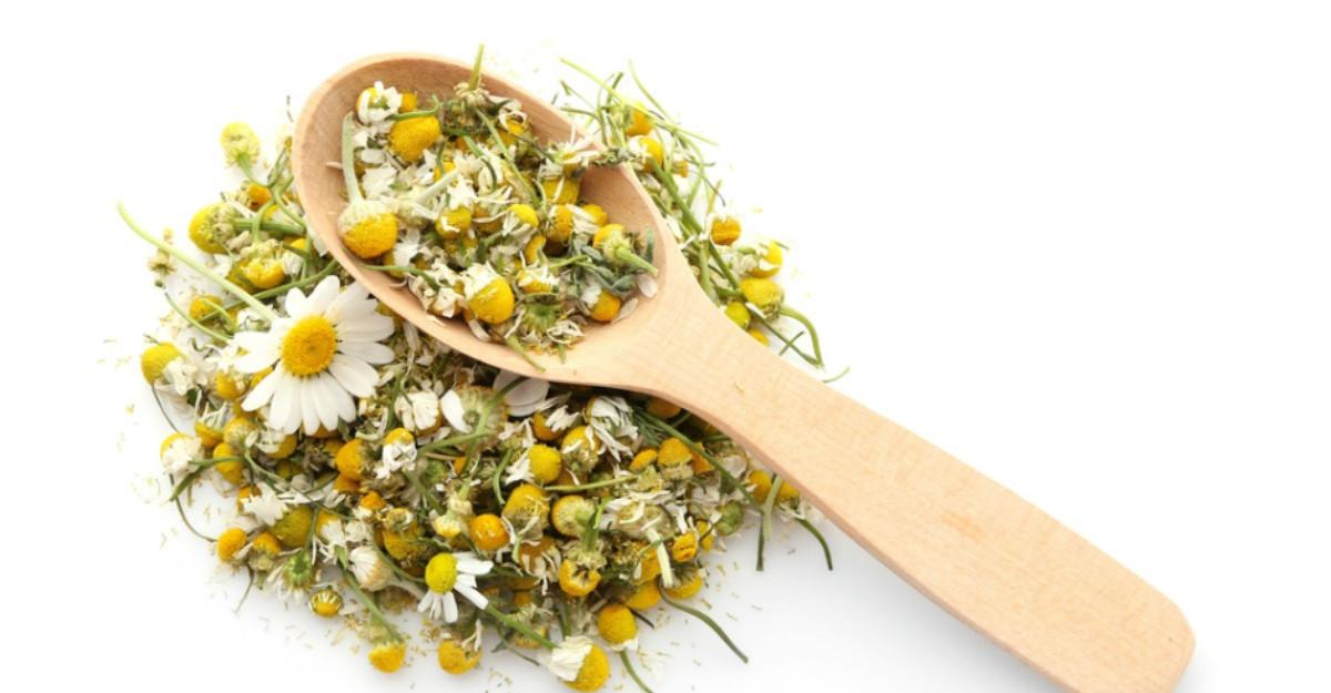 Tratamente naturiste: Plante calmante pe care să le avem în casă