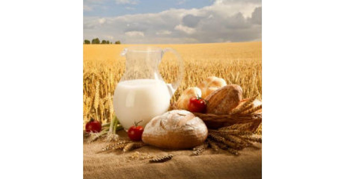 Expertii europeni - Motive pentru a consuma cereale
