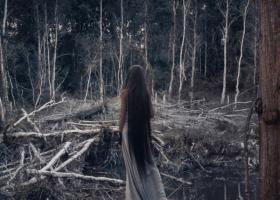 Descopera o lume supranaturala: Filme si seriale cu vrajitoare care te vor fermeca pe loc