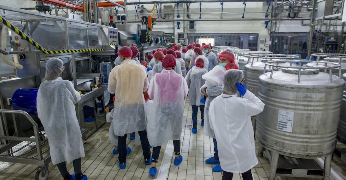 Danone a deschis porțile fabricii din București celor care au dorit să vadă cum se produce iaurtul