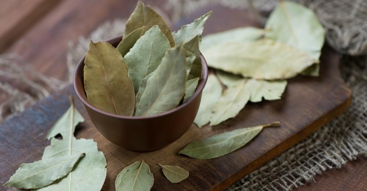 Beneficiile incredibile ale frunzelor de dafin. Se poate face si ceai din ele