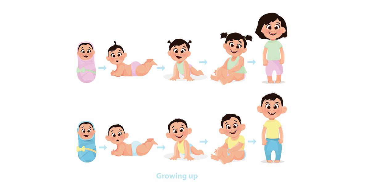Cum crește bebelușul în primele 6 luni?