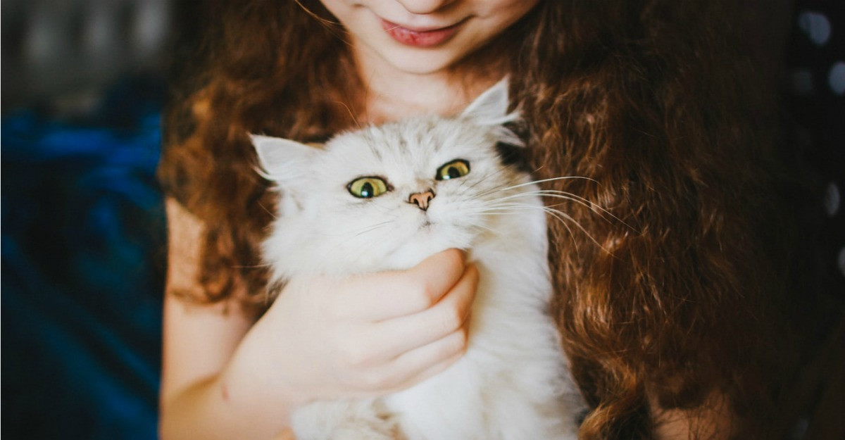 Copiii si pisicile. Cateva lucruri pe care parintii ar trebui sa le stie
