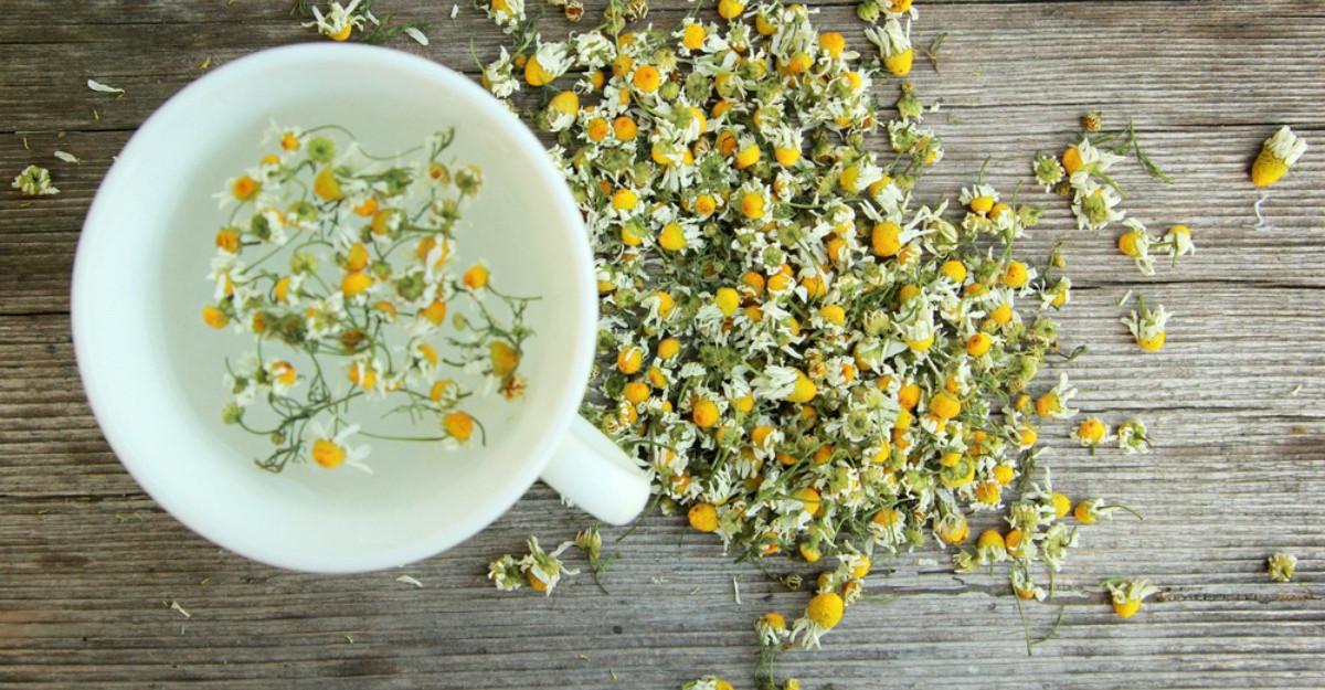 Ceaiul care poate întări sistemul imunitar