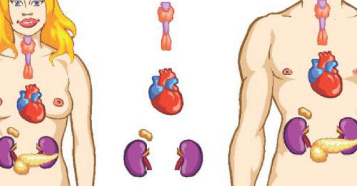 17 Tratamente naturiste pentru Tiroida