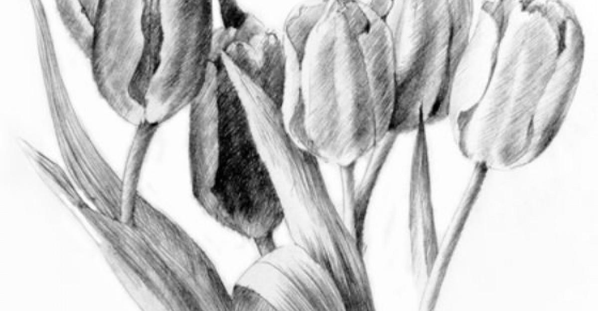 Desene in creion, arta in alb si negru