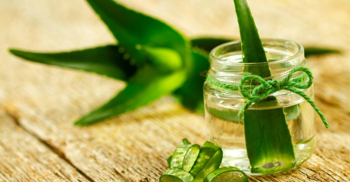 Aloe Vera, planta cu efecte miraculoase asupra sanatatii