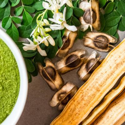Moringa: o plantă premiată pentru beneficiile sale dovedite științific