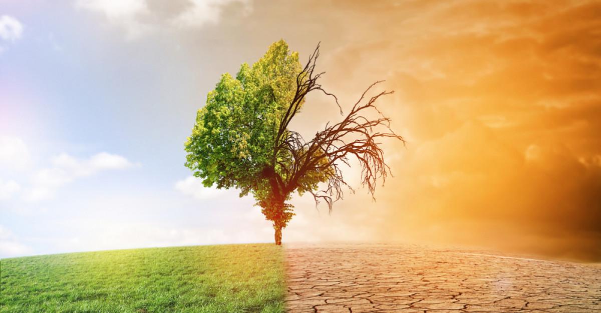 Omenirea este pe minus, azi a consumat resursele pentru tot anul