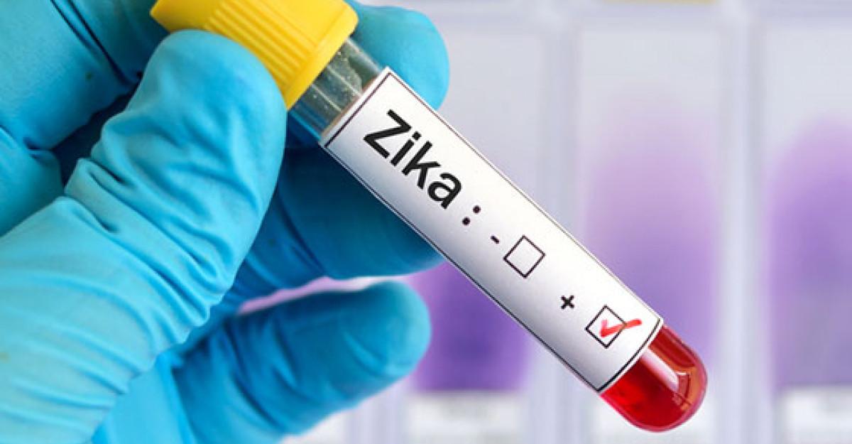 Virusul ZIKA: transmitere, simptome, tratament