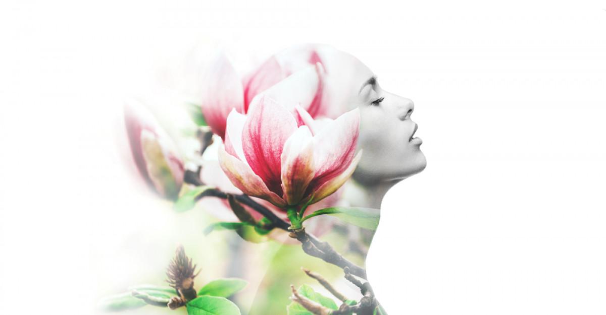 Tabăra Kudika Body&Spirit - Începe călătoria către împlinirea potențialului tău!