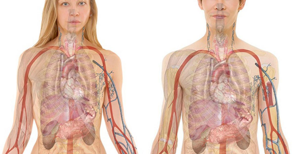 Tratamente naturiste care iti CURATA rinichii