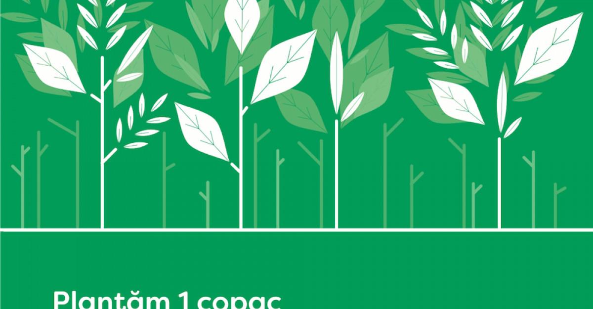 Cu intenții bune. Plantăm un copac la fiecare comandă plasată pe biodeck.ro