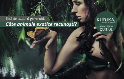 Test de cultura generala: Cate animale exotice recunosti?