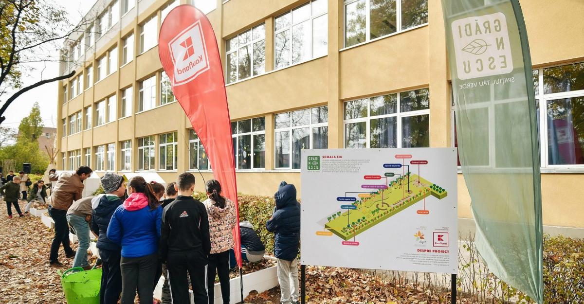 Kaufland România aduce grădinile comunitare în școli, aproape de copii