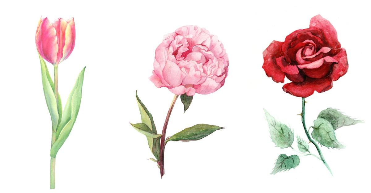 Alege o floare si afla tot ce nu stiai despre personalitatea ta