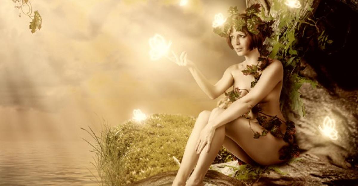 Horoscopul COPACILOR CELTICI: Care este copacul care te reprezinta?