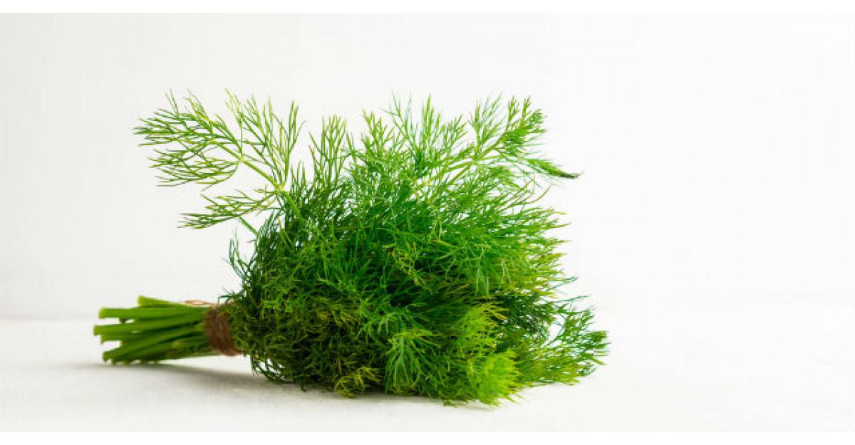 Minunile unei plante folosite de milenii: mararul