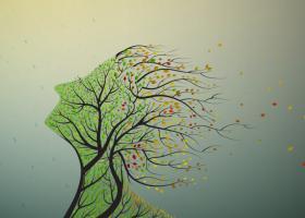 Citate motivationale despre plante