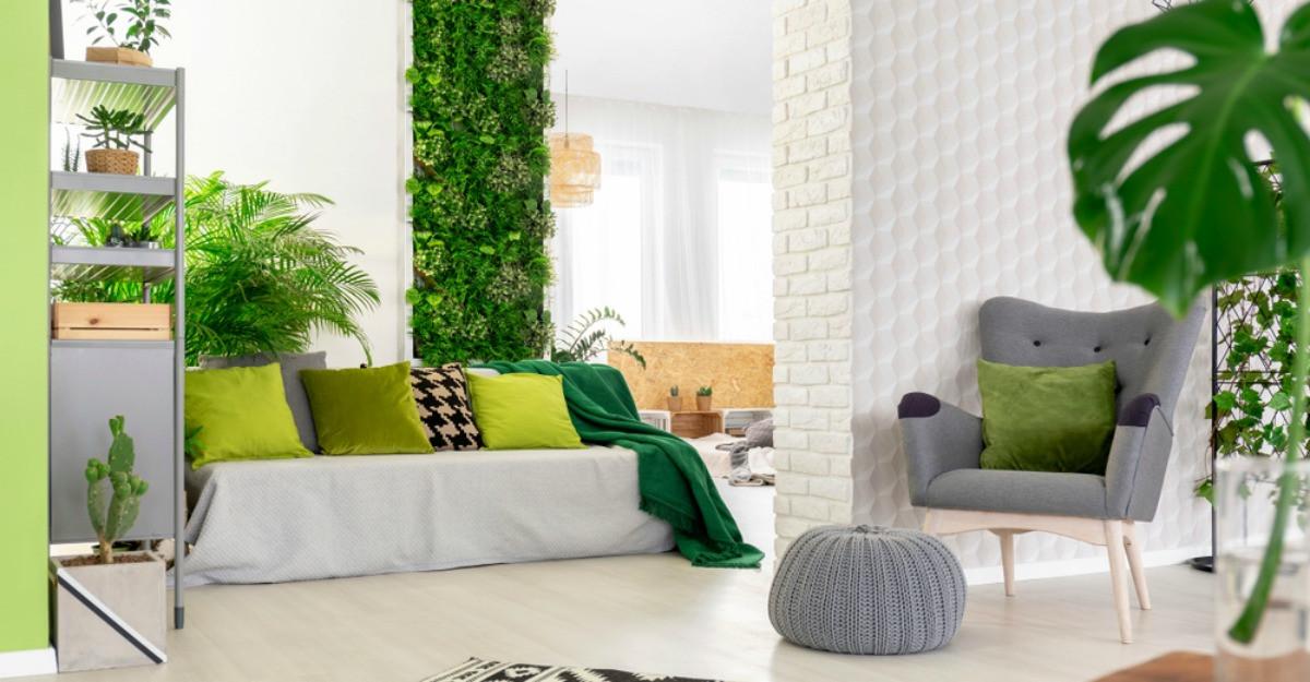 Ce sunt pereții verzi și ce avantaje au pentru locuință