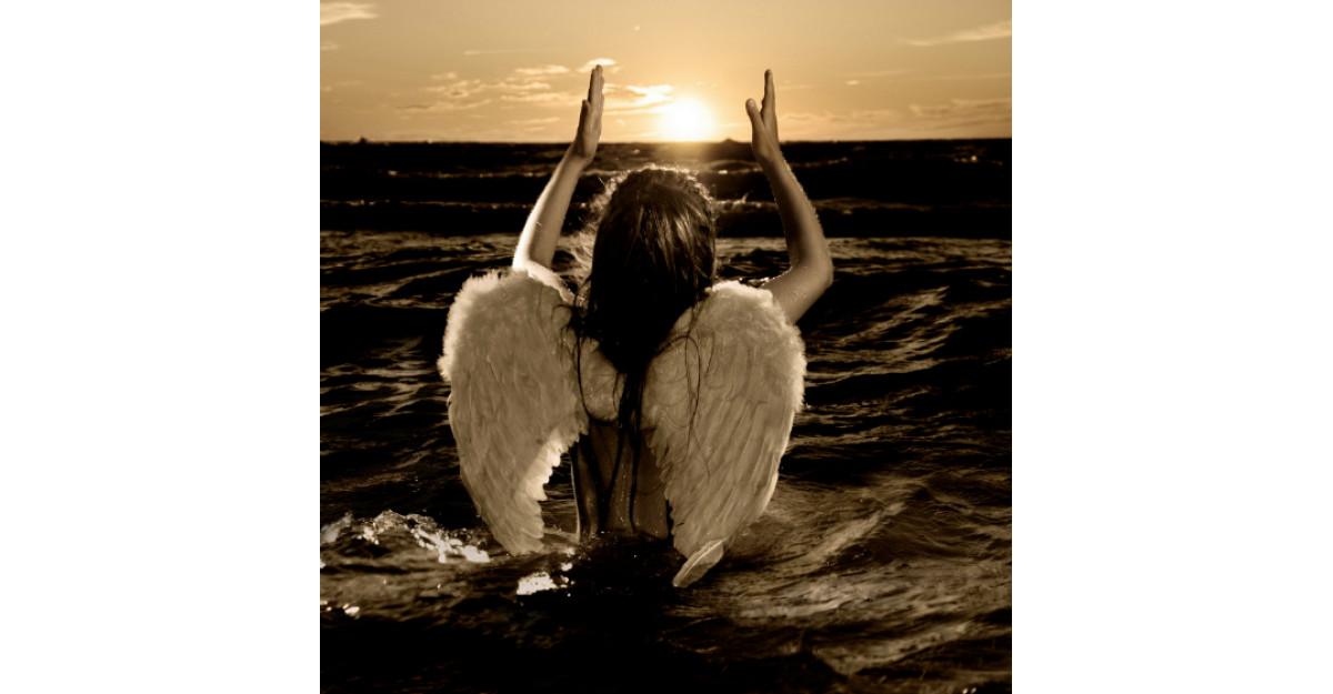 Horoscopul divin: Cartea ingerului pentru zodia ta!