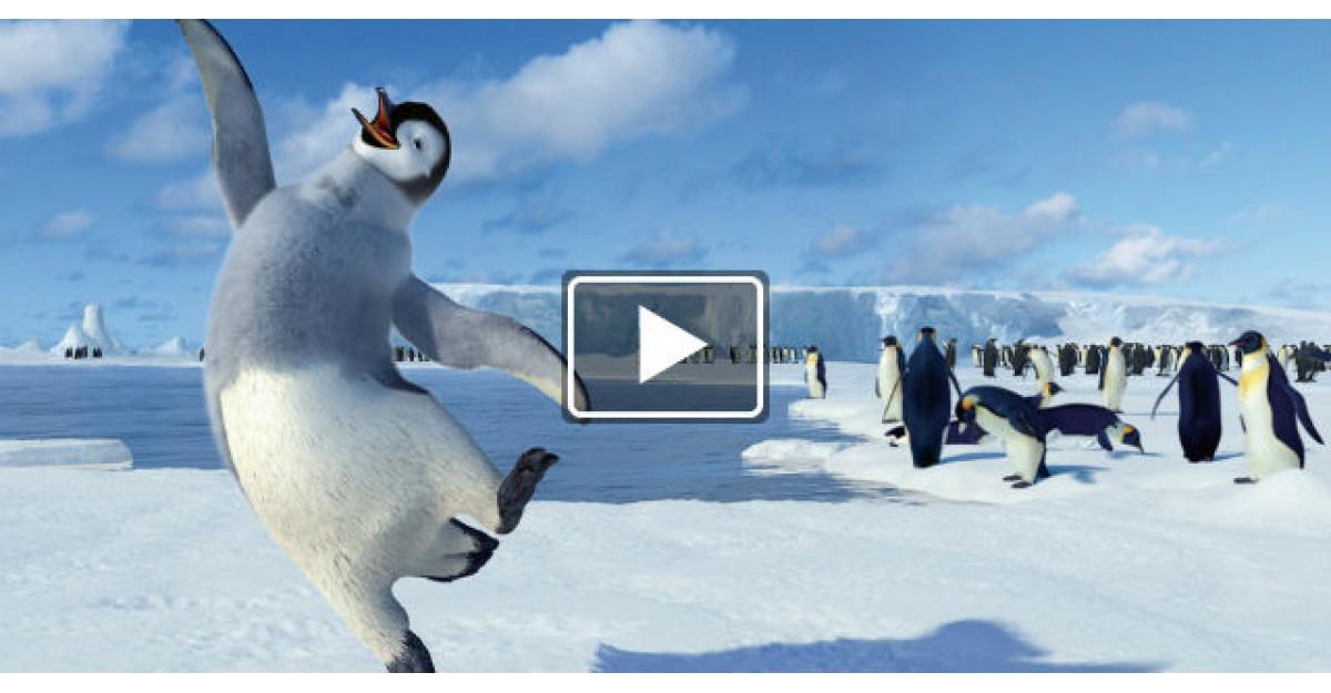 Video: Pinguinul care se bucura de venirea sarbatorilor. Fericirea lui este molipsitoare