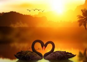 Cum sa atragi mai multa dragoste in viata ta