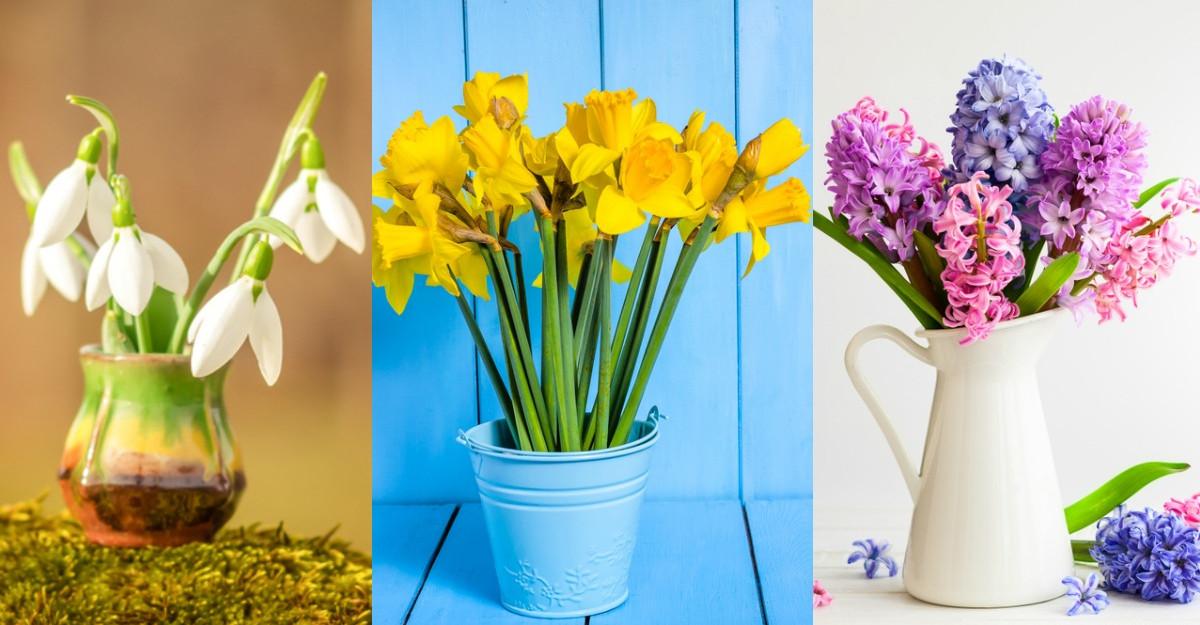 Alege o floare de primăvară și noi îți vom spune cum vor fi următoarele luni pentru tine